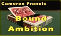 Bound Ambition by Cameron Francis