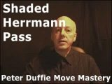 Shaded Herrmann Pass by Peter Duffie