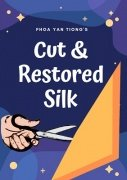 Cut and Restored Silk by Phoa Yan Tiong