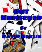 Out Numbered by David Devlin
