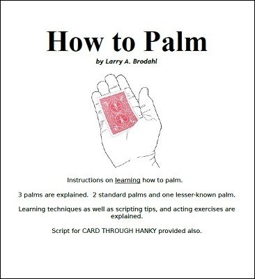How To Palm by Larry Brodahl