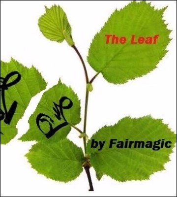 The Leaf by Ralf (Fairmagic) Rudolph