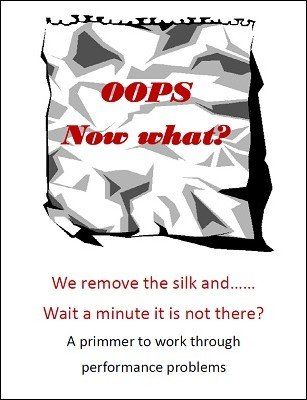 Oops. Now What? by Brian T. Lees